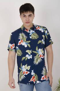 Camisa 2713