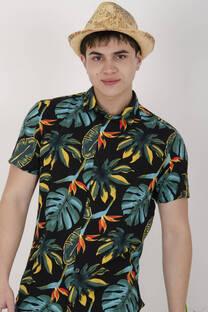 Camisa 2723 Manga Corta