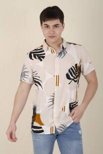 Camisa 2724 -