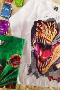 Camiseta dinosaurios Estampa plastisol -