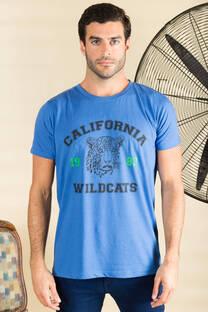Remera California  -