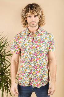 Camisa Kingston -